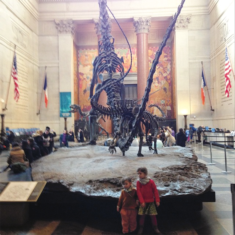 Exploring the National History Museum! #travellingwithkids #greatthingstovisitwithkids